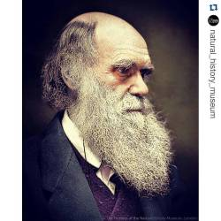 #Repost @natural_history_museumSi señor… Los hipsters tienen mucho que aprender de los naturalistas victorianos… For #WorldBeardDay, the Victorian naturalists would have been able to show today's hipsters a thing or two and not many do better than Charles Robert Darwin. This photograph was taken in 1874, when Darwin was in his mid-60s, with the colour added later electronically.#Darwin #History #Beard #Museum #NHM #NaturalHistory #Victorians #Evolution #Beagle