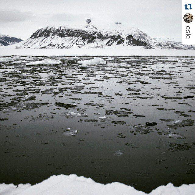 #Repost @csicEl Ártico es una de las regiones del planeta más sensibles a los impactos del cambio climático. Un equipo liderado por el #CSIC ha descubierto que el dióxido de carbono tiene un efecto fertilizante sobre el océano, pero solo si las temperaturas son bajas #Ártico #cambioclimático #océanos #naturaleza #hielo #nature #oceans #earth #follow