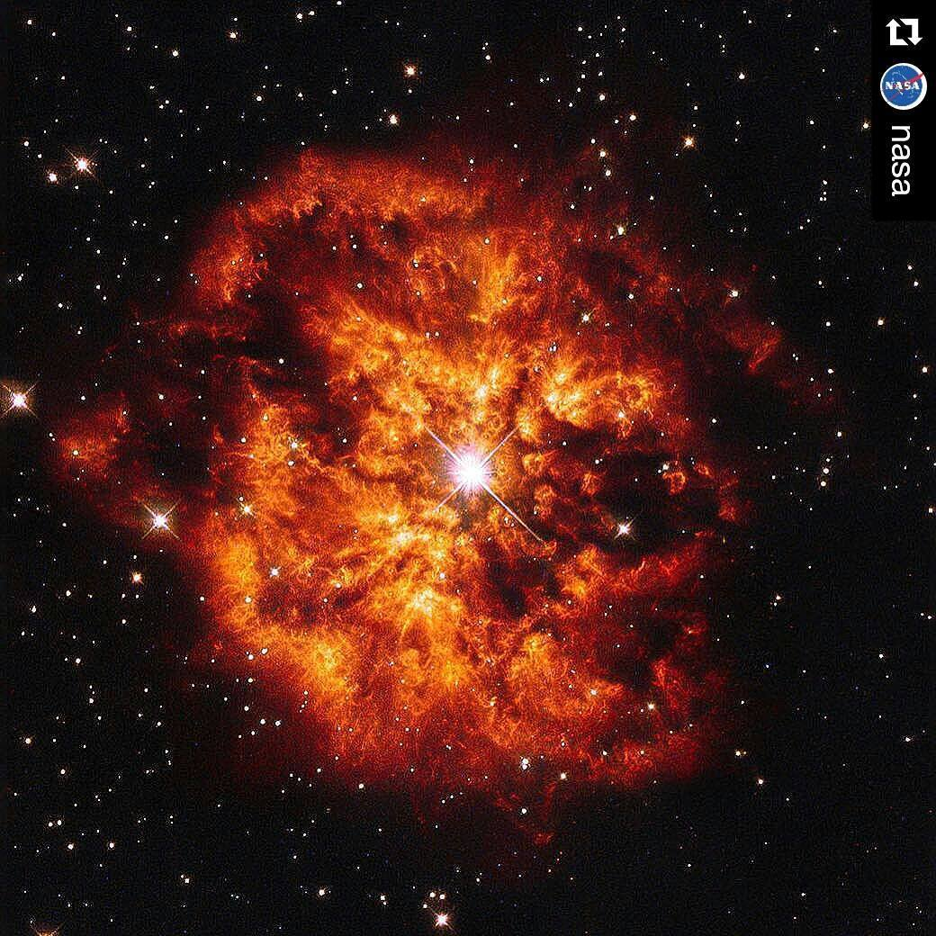 #Repost @nasaEn esta imagen vemos el espectacular maridaje cósmico de la estrella Hen 2-427 - más conocida como WR 124 - y la nebulosa M1-67 que la rodea.Here we see the spectacular cosmic pairing of the star Hen 2-427 - more commonly known as WR 124 - and the nebula M1-67 which surrounds it. Both objects, captured here by the Hubble Space Telescope are found in the constellation of Sagittarius and lie 15,000 light-years away. The star Hen 2-427 shines brightly at the very center of this explosive image and around the hot clumps of surrounding gas that are being ejected into space at over 93,210 miles (150,000 km) per hour.Hen 2-427 is a Wolf-Rayet star, named after the astronomers Charles Wolf and Georges Rayet. Wolf-Rayet are super-hot stars characterized by a fierce ejection of mass. The nebula M1-67 is estimated to be no more than 10,000 years old - just a baby in astronomical terms - but what a beautiful and magnificent sight it makes.Image credit: ESA/Hubble & NASA, Acknowledgement: Judy Schmidt#nasa #astronomy #star #hubble #hst #hubble25 #nebula #nasabeyond #science
