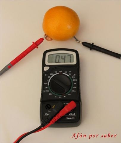 312 watermark 640x480 img 2317 Y las naranjas hicieron la luz