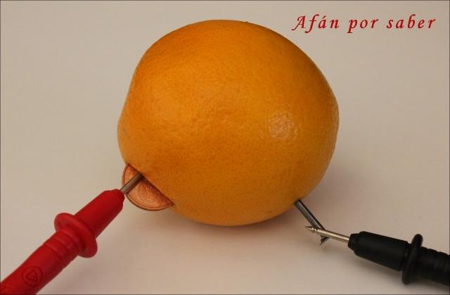 313 watermark 640x480 img 2324 Y las naranjas hicieron la luz