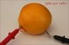 thumbs img 2324 Y las naranjas hicieron la luz