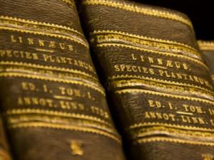 Libros 300x225 CARL LINNAEUS (y II)