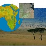 collage 150x150 (Des)igualdad en la ciencia