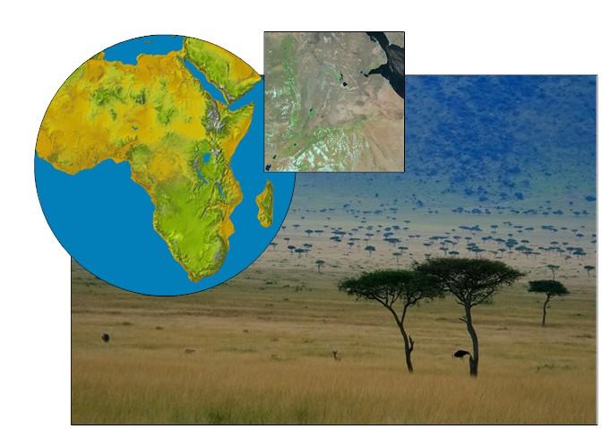 collage La cuna de la humanidad