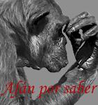portada research Para entender la paleoantropología. 2ª parte: La evolución