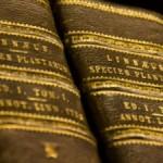 Libros 300x225 150x150 (Des)igualdad en la ciencia