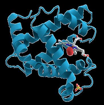 Proteinas en 3D Siete días ... 19 a 25 de agosto