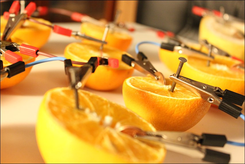 IMG 2410 Y las naranjas hicieron la luz