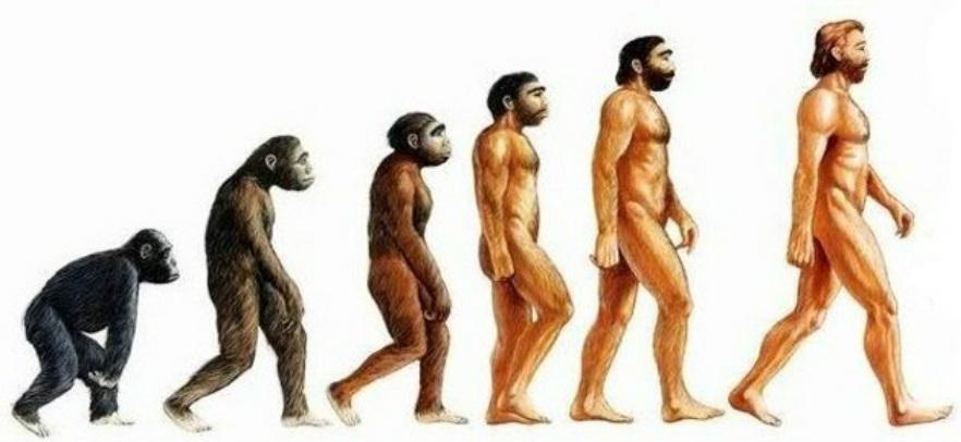 evolucion humana Para entender la paleoantropología. 2ª parte: La evolución