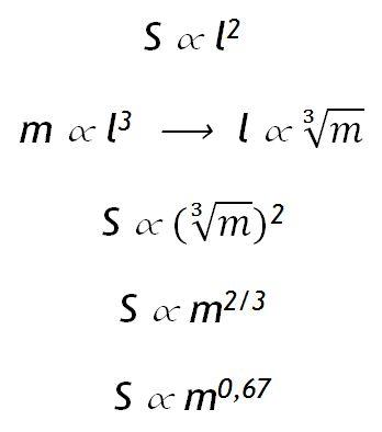 Imagen3 Los números de la biología (I)